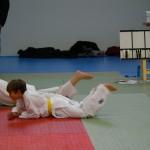 22.12.13 Compétition Judo à Ouzouer-le-Marché (9)